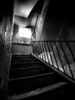 Hospital Shadows #5
