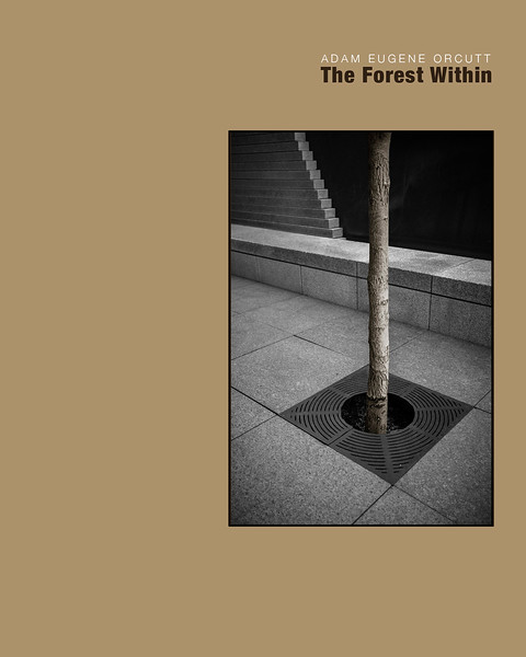 Forest Within - Cover