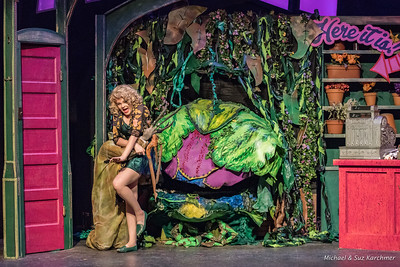Little Shop of Horrors 2018 HR-7