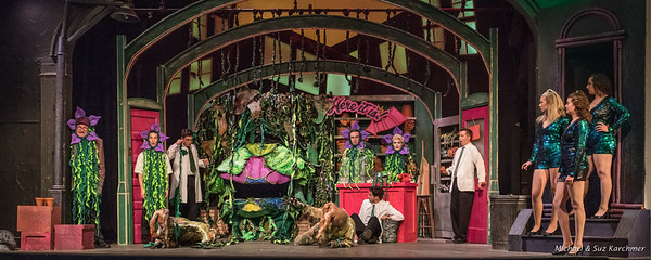 Little Shop of Horrors 2018 HR-2