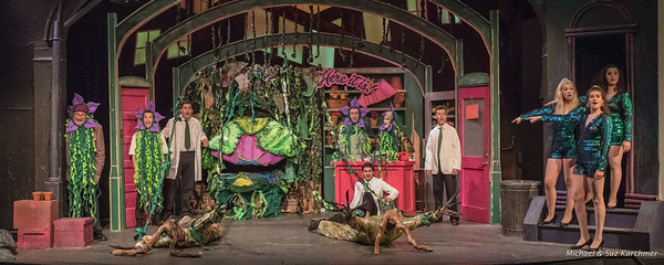 Little Shop of Horrors 2018 HR-1