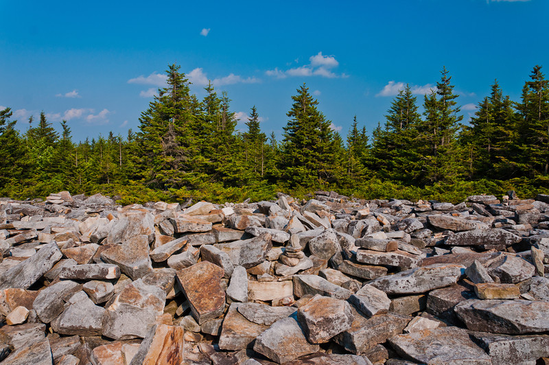 Spruce Knob, Monongahela National Forest, West Virginia