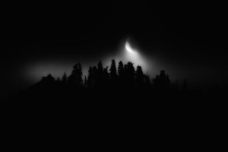 "Misty Moonrise with Yosemite Pines - Augen 2013<br> <a href=""http://garrisonartcenter.org/ex_photo.cfm"">Gallery of Garrison Art Center: PHOTOcentric 2013</a>"