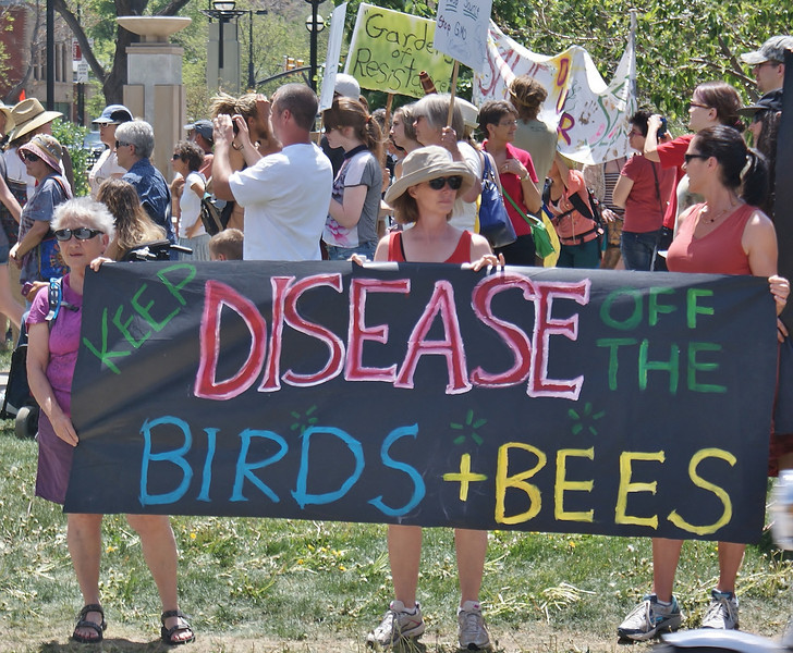 Three women hold large anti-GMO banner about birds and bees.