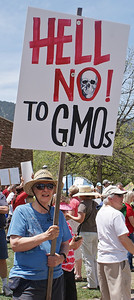 "Woman with sign ""Hell No to GMOs"", other pritester in background."