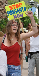 Young woman raises fist in air while marching, ant-Monsanto sign behind her.
