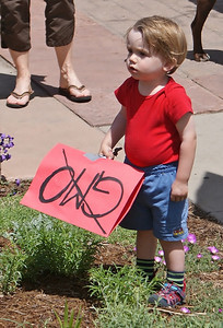 Little boy standing by himself, holding anti-GMO sign.