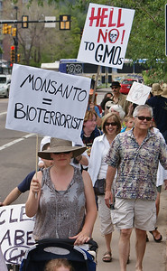 Woman holding sign about Monsanto and bio-terrorism, pushing child in stroller.