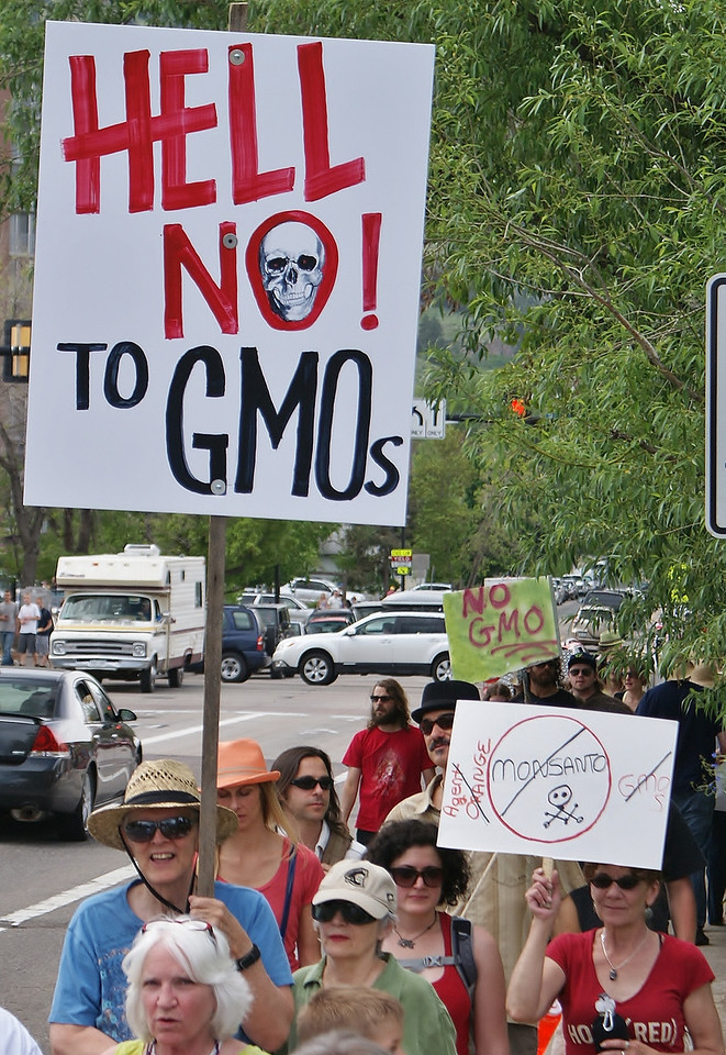 "Protester marching with ""hell no to GMOs"" sign."