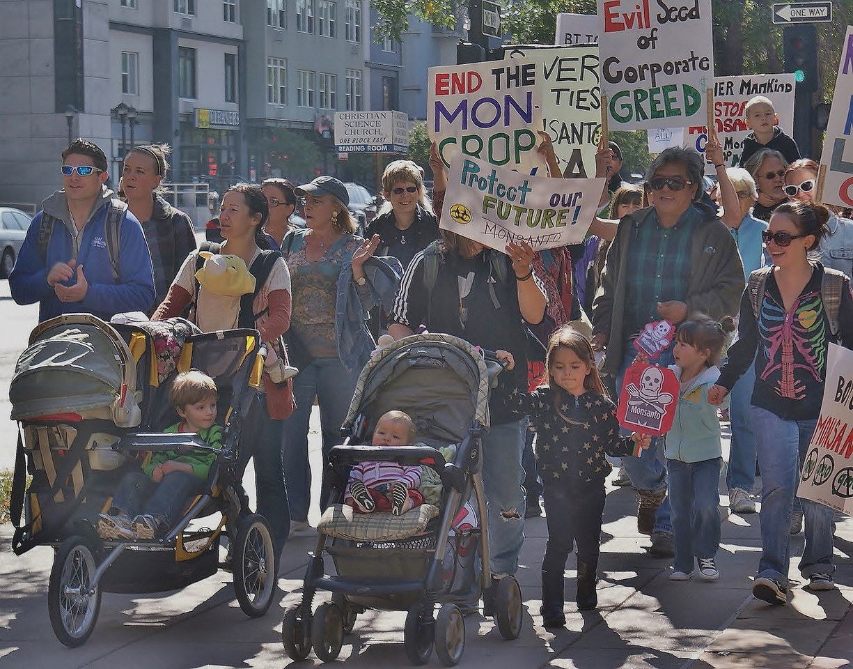 """About 250 people joined the """"March Against Monsanto"""" in Denver, Colorado, one of 400 marches worldwide. (10/12/13) The actions were to protest Monsanto's production and use of GMO's, pesticides, herbicides and genetically engineered seeds."""