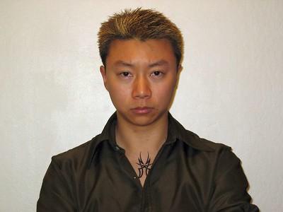V as a typical HK triad member