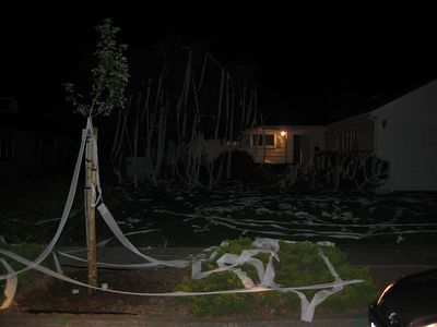 Boys house - tp'ed