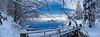 Primo Lago di Fusine-anatre 280107-719099