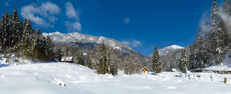 Valle di Ugovizza 010304-046473# v100