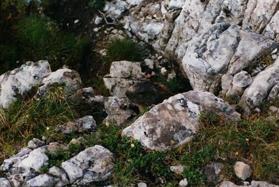 Dolomiti 1999-07