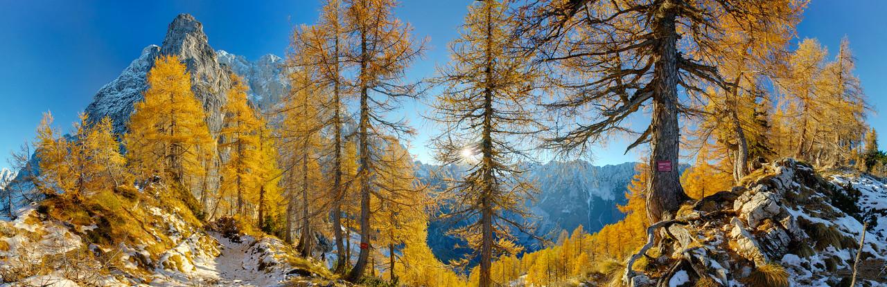Foresta dello Sleme - foto n° 231015-327917