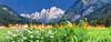 Valbruna sera 030815-169298 v110