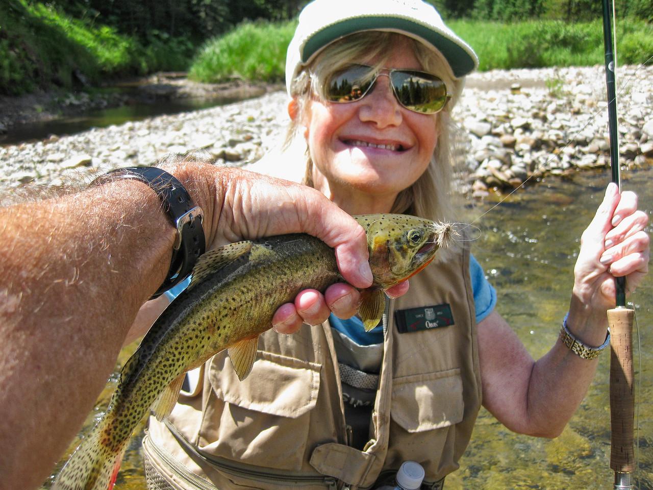 Carol's cutthroat trout