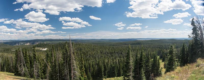 Panorama 5 from Mt  Washburn