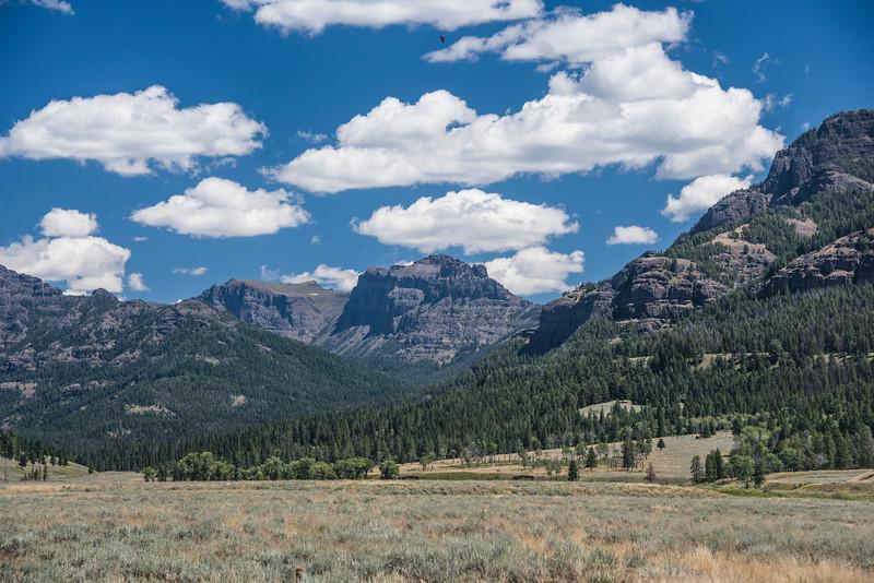 Lamar Valley,Yellowstone Park