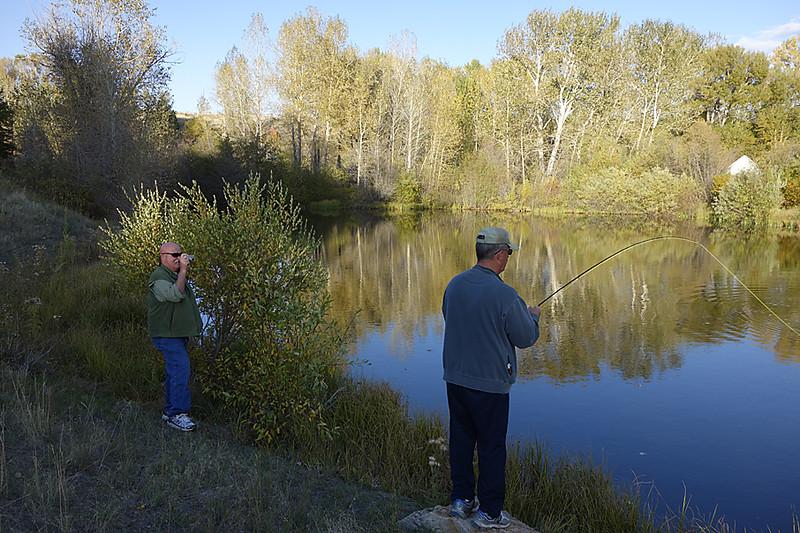 Steve's pond 1