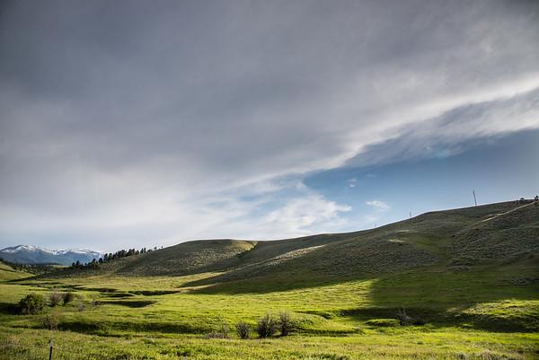 David Lutien Ranch - MLR