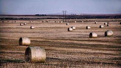 Montana 2014 (195)-Edit-300