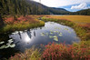 Beautiful scenery in Montana - stream and meadow - our own special spot.