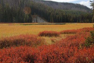 Montana Sep 2010