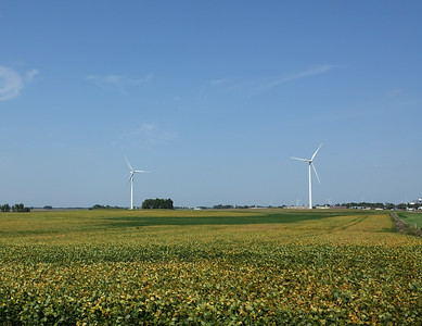 One of the many wind farms in Minnesota.  As of last year MN got 18% of its electricity from wind power.