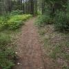 Boundary Walk - 1