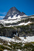 Alpine scenery with snow and Mount Reynolds near Logan Pass in Glacier National Park, Montana, USA.