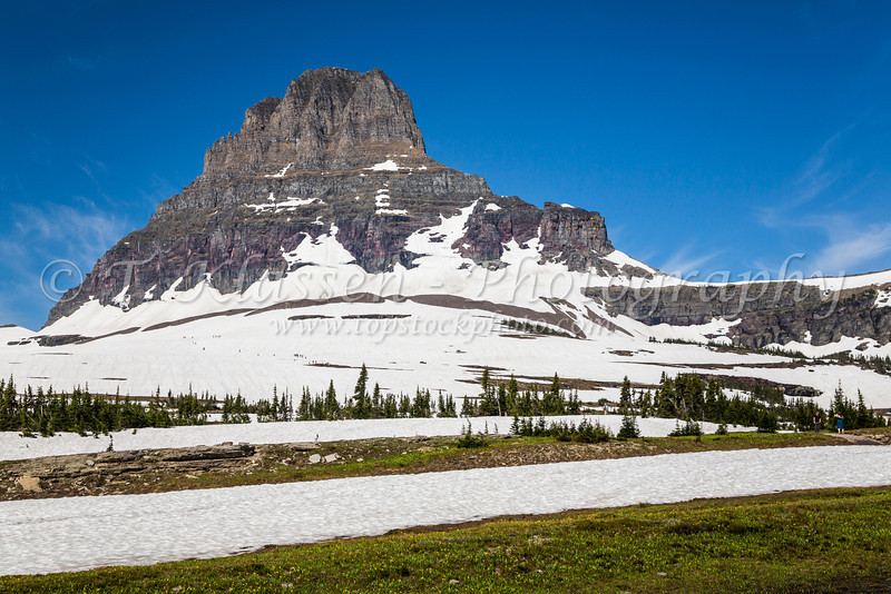 Alpine scenery and Clements Mountain with snow near Logan Pass in Glacier National Park, Montana, USA.