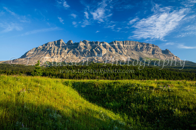 Alpine scenery and East Flattop Mountain near St. Mary Lake in Glacier National Park, Montana, USA.
