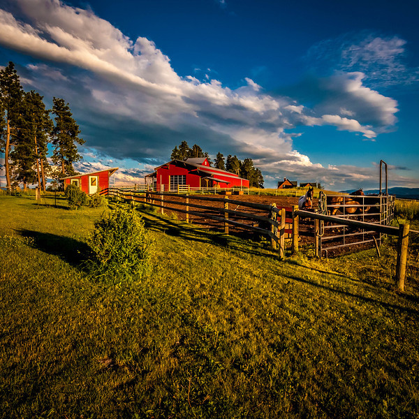 Afternoon Sky's on the Farm - Kalispell, MT, USA