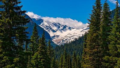 Montana 2006/2008