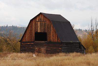 Montana Barns