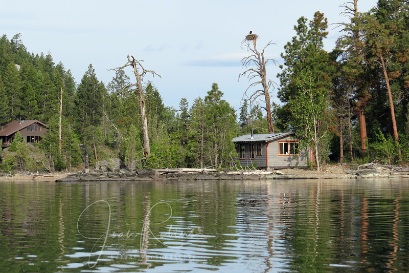 The small island and bay where the old Osprey nest has been taken over by Bald Eagles