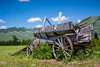 An old rustic wagon near West Glacier, Montana, USA.
