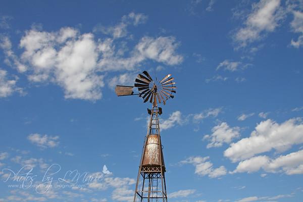 Windmill Farm - East Helena, MT