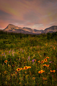 The evening light is reflected upon the peaks above the St. Mary Valley. Wildflowers grow in a field near the famous lake.  Photo by Kyle Spradley | www.kspradleyphoto.com