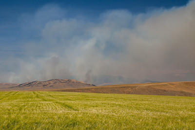 Smoke from the Chinn wildland fire southwest of White Sulfur Springs rises in the distance, 2017. Photo taken from Sixteen Mile Creek Road.