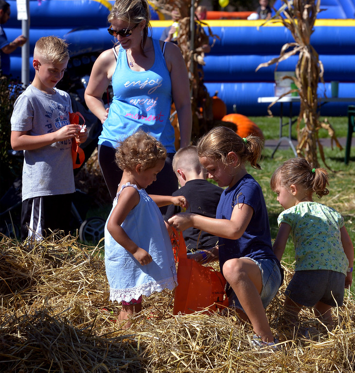 . Children look for candy in a haystack at the Whitpain Community Festival Sept. 23, 2017. / Bob Raines--Digital First Media