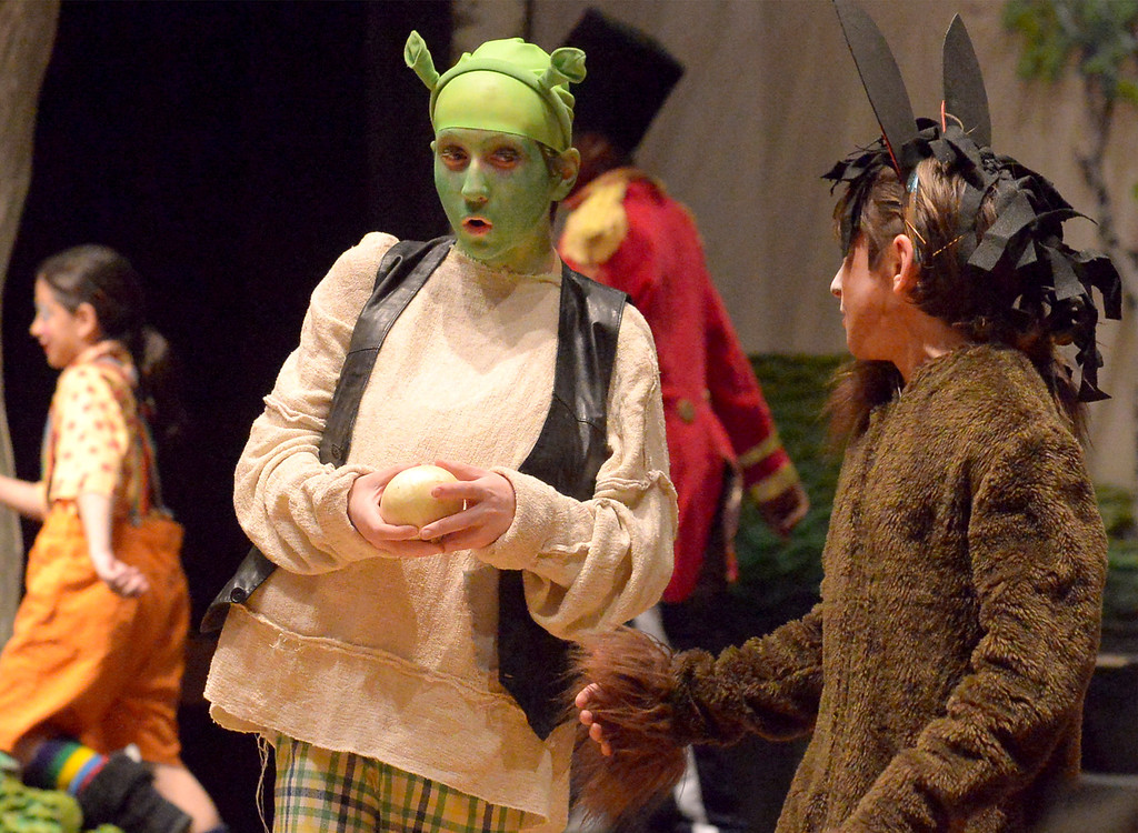 ". Bob Raines-- Digital First Media //  Shrek (Jason De Mets) tries to explain his ogres-are-like-onions  metaphor to Donkey (Payton Breinich) during the Apr. 11, 2016 rehearsal for the Young Starrs Theater Company production of ""Shrek, The Musical, Jr.\"""