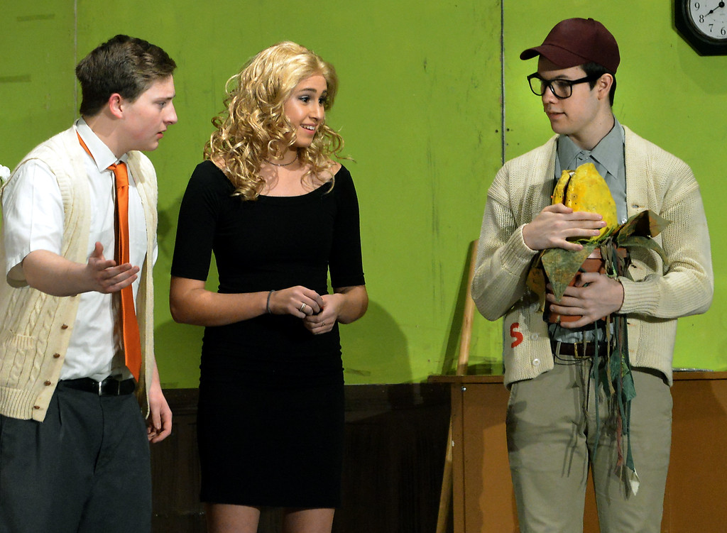 . Seymour (Neil Devlin), right, urged on by Audrey (Jamie Fromm), shows Mr. Mushnik (Jeff Pfeiffer) the strange plant he has been cultivating that could bring customers to the flower shop.   |   Bob Raines--Digital First Media