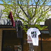 Official Art is Life T-shirts from Thread Society hang in a street tree over the merchandise table.  Eric Fitzsimmons — Digital First Media