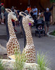A giraffe bench awaits tired guests at the Elmwood Zoo, May 28, 2016.   / BOB RAINES--DIGITAL FIRST MEDIA