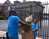 Bob Raines--Digital First Media <br /> Robert McKnight and his son, Isaac, from the First Baptist Church of Norristown, clean up debris in front of Montgomery OIC during the Rock the Block community improvement event Sept. 17, 2016.