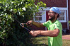 Bob Raines--Digital First Media <br /> Caleb Derby, Habitat for Humanity, trims bushes on Swede St., Norristown during the Rock the Block community improvement event Sept. 17, 2016.