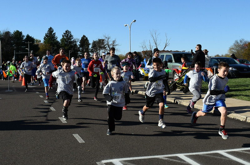 Runners take off from the starting line for Willow Dale Elementary School's Puma 5K Nov. 12.  Debby High — For Digital First Media